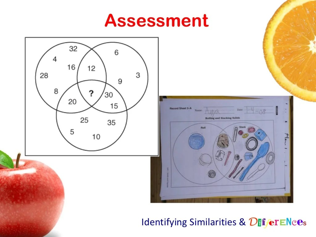 Assessment Identifying Similarities Amp Differences