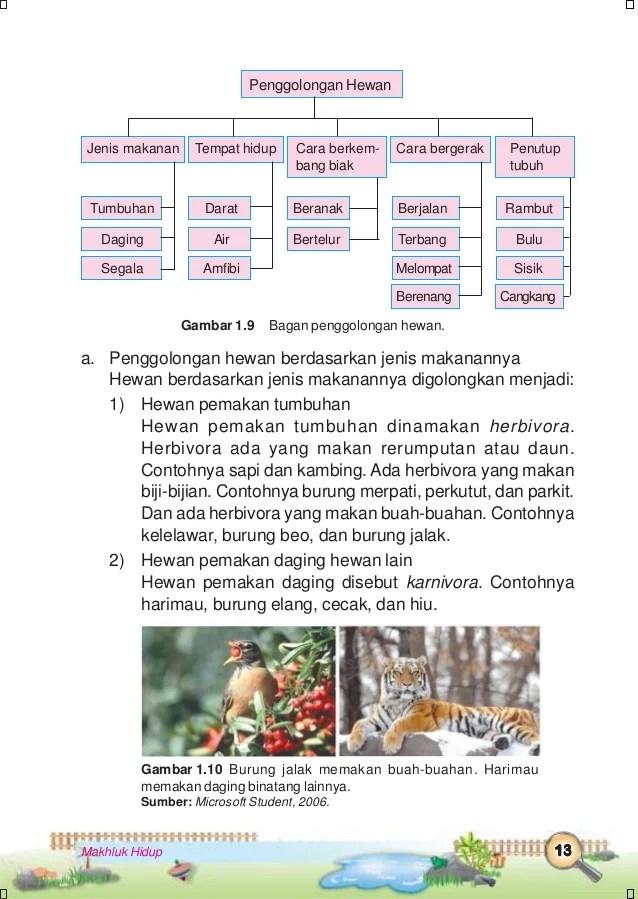 Ilmu pengetahuan alam kelas 3