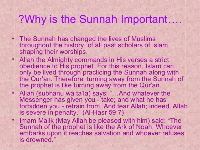 Importance Of The Sunnah