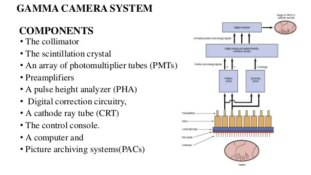 Simple Cathode Ray Tube Diagram A Schematic Diagram Of Crt