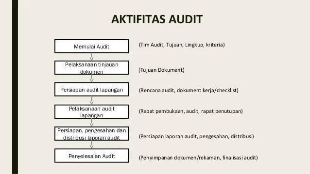 Contoh Formulir Audit Internal Mikonazol