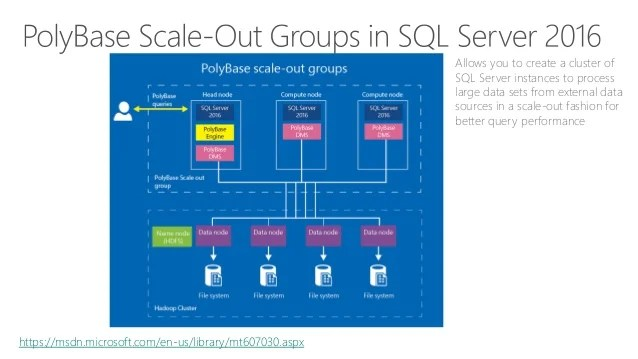 Sql Base Server 2017 Poly