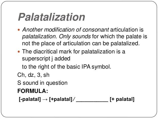 Palatalization Of Alveolar - Desain Terbaru Rumah Modern