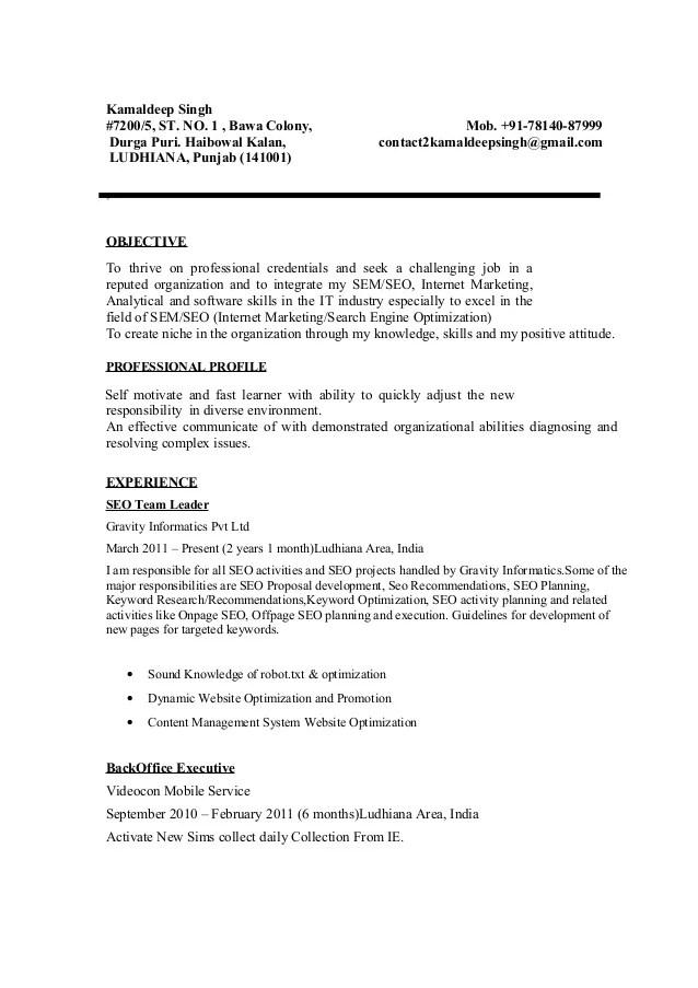 seo expert resume template