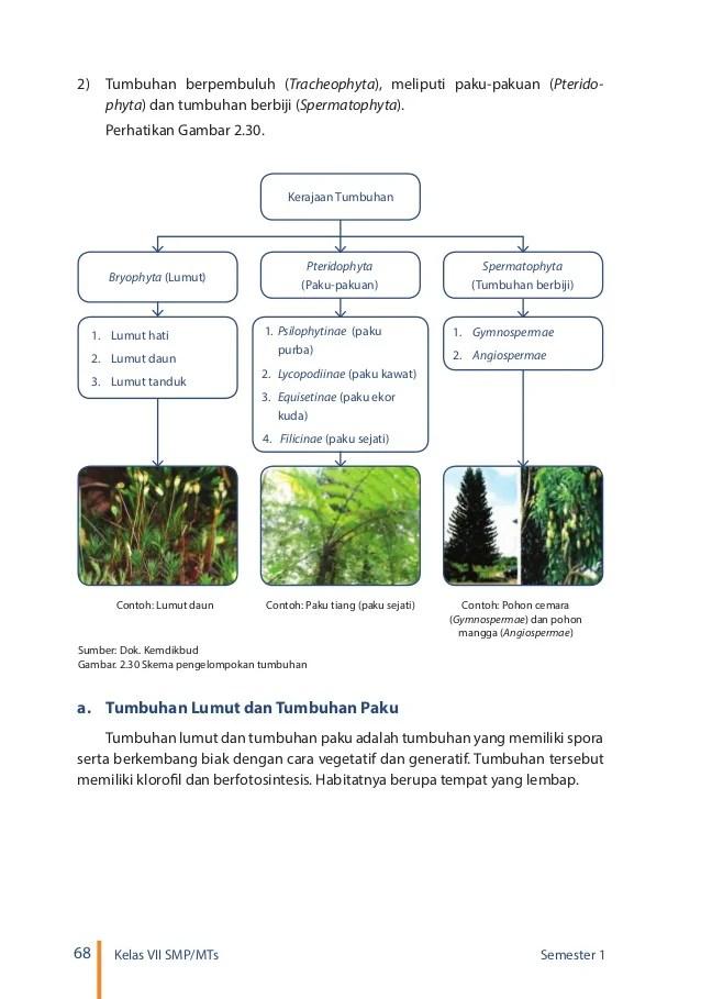 Tabel 2.6 Perbedaan Tumbuhan Lumut Paku Dan Mangga : tabel, perbedaan, tumbuhan, lumut, mangga, Kelas, Smp_ipa_semester_1_siswa_2016