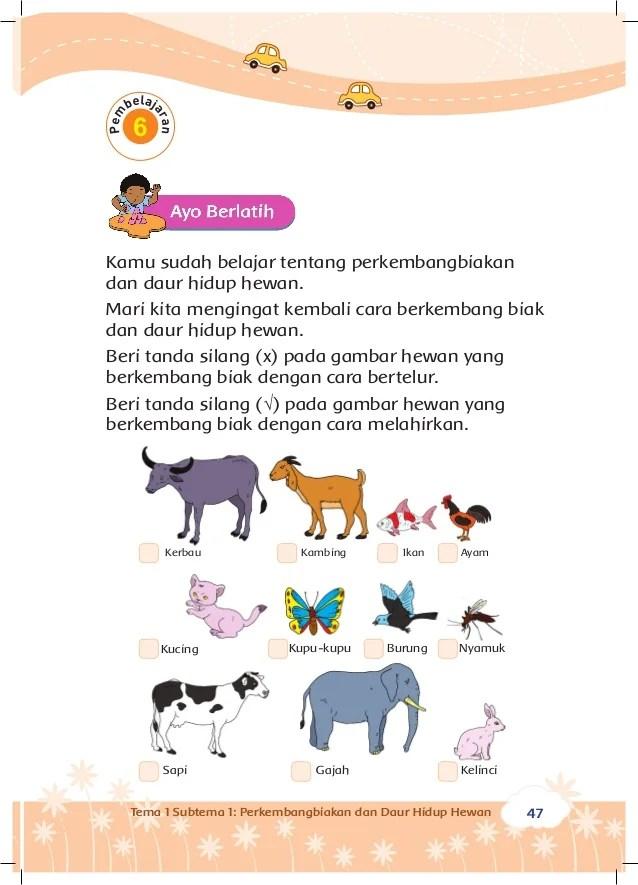 Hewan Bertelur Dan Melahirkan : hewan, bertelur, melahirkan, Perkembangbiakan, Hewan, Tumbuhan, Kelas, Tema1, Siswa