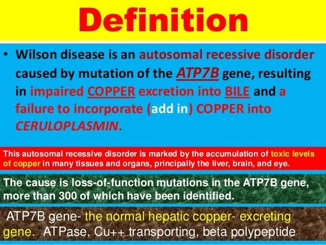 L2728 metabolic & inherited liver disease