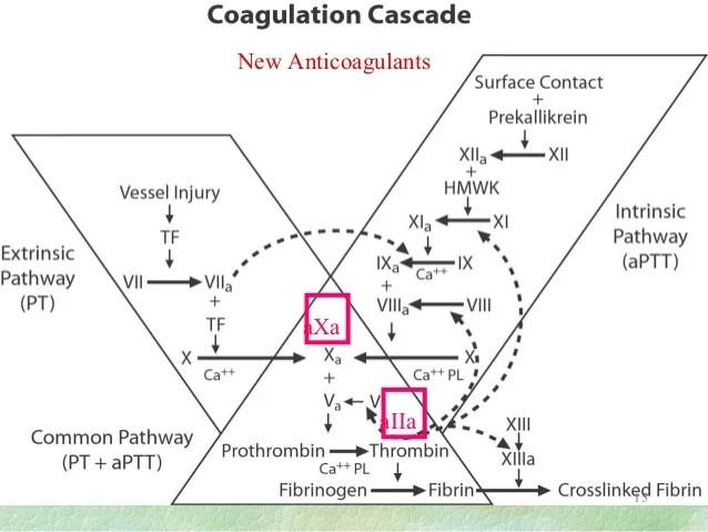 cmp lab diagram a wiring coag online laboratory tests of hemostasis and coagulation system dr ellinor pe
