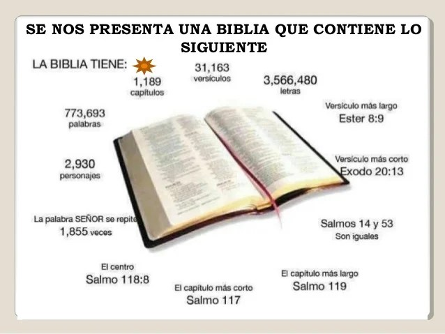 Texto Sus Pies Biblico