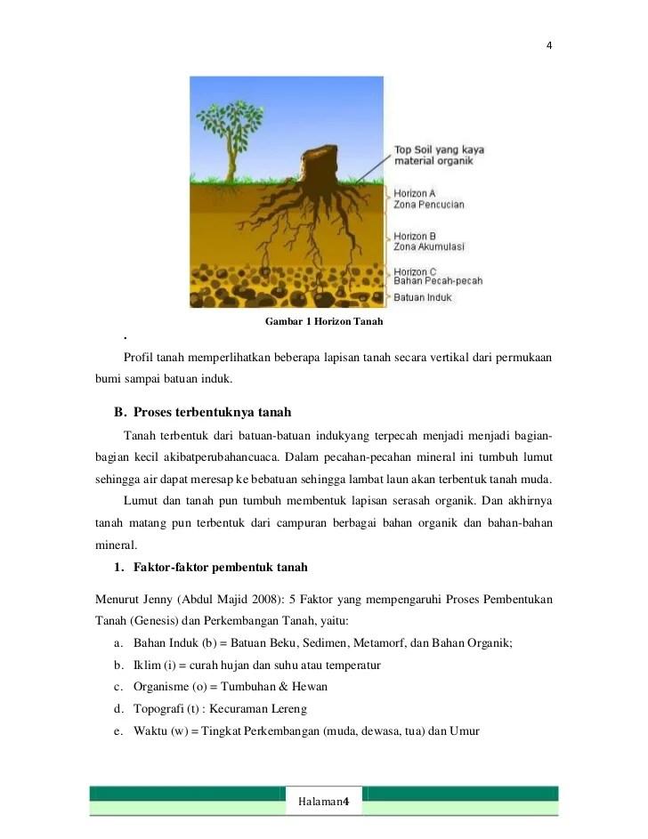 Faktor Yang Mempengaruhi Pembentukan Tanah : faktor, mempengaruhi, pembentukan, tanah, Sebutkan, Faktor, Mempengaruhi, Proses, Terbentuknya, Tanah