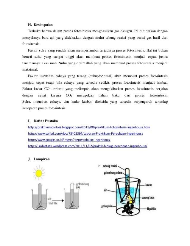 Laporan Praktikum Fotosintesis Ingenhousz Lengkap : laporan, praktikum, fotosintesis, ingenhousz, lengkap, Laporan, Praktikum, Biologi, Percobaan, Ingenhousz