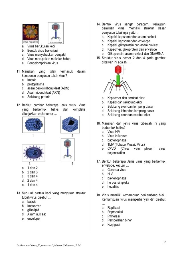 Selubung Protein Penyusun Virus Disebut : selubung, protein, penyusun, virus, disebut, Latihan, Virus
