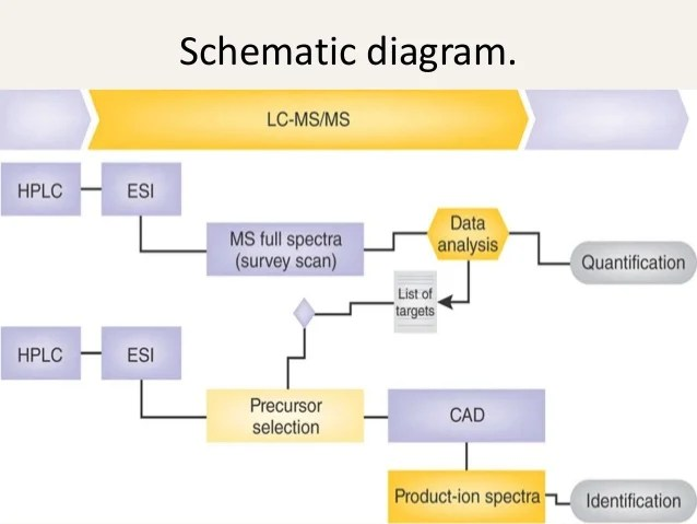 schematic diagram of mass spectrometer bluetooth application stack liquid chromatography and spectrometry lcms 5