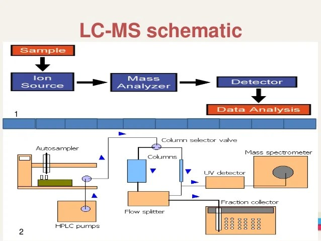schematic diagram of mass spectrometer home wiring software free liquid chromatography and spectrometry.(lcms)