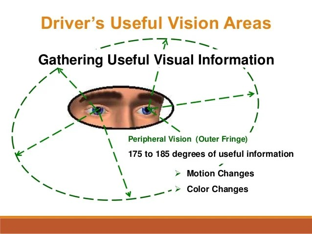 Peripheral Vision Definition In Driving