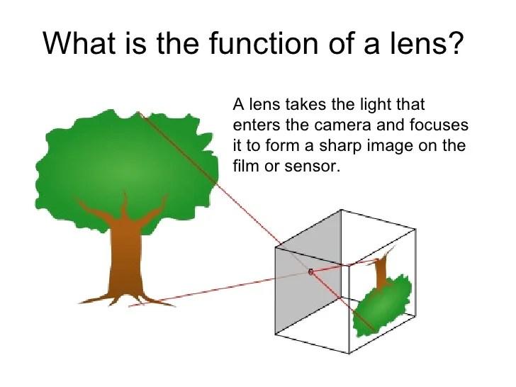 Camera Lens Diagram Related Keywords Suggestions Camera Lens