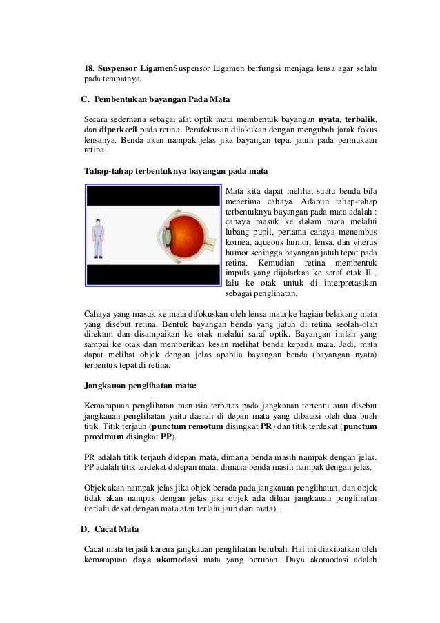 Indra Penglihatan Dan Alat Optik : indra, penglihatan, optik, Makalah, Optik