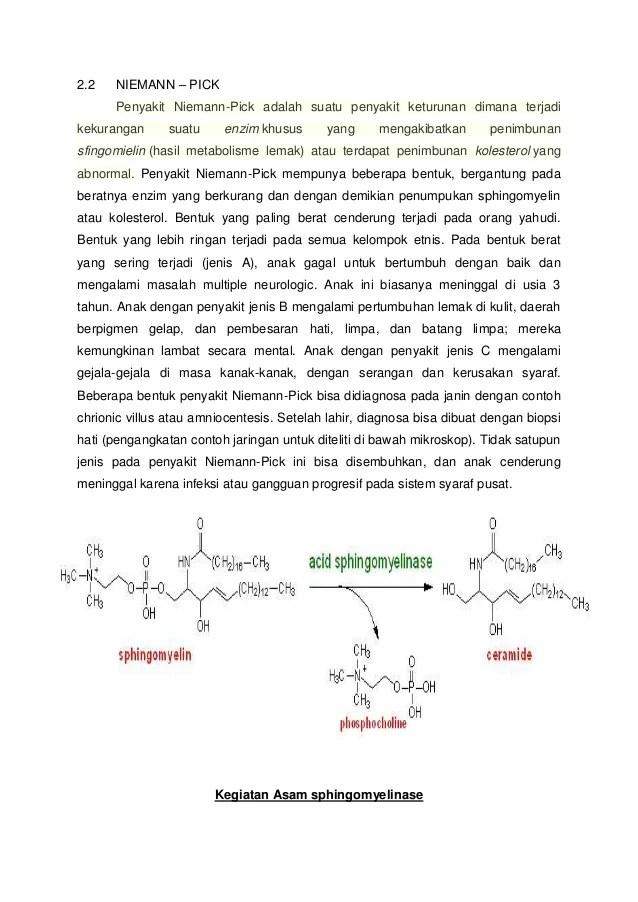 Makalah Biokimia Penyakit Niemann Pick Dan Penyakit Farber