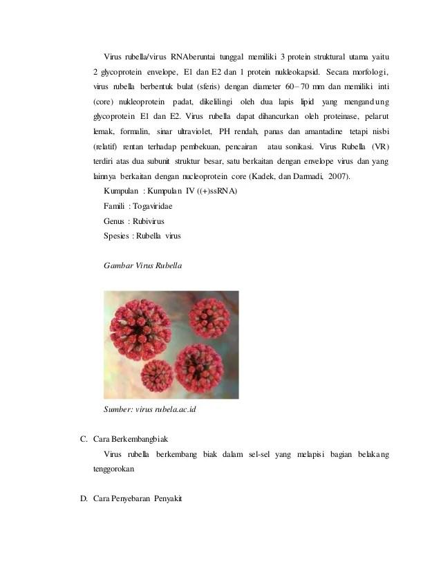 Makalah mikrobiologi virus rubella new