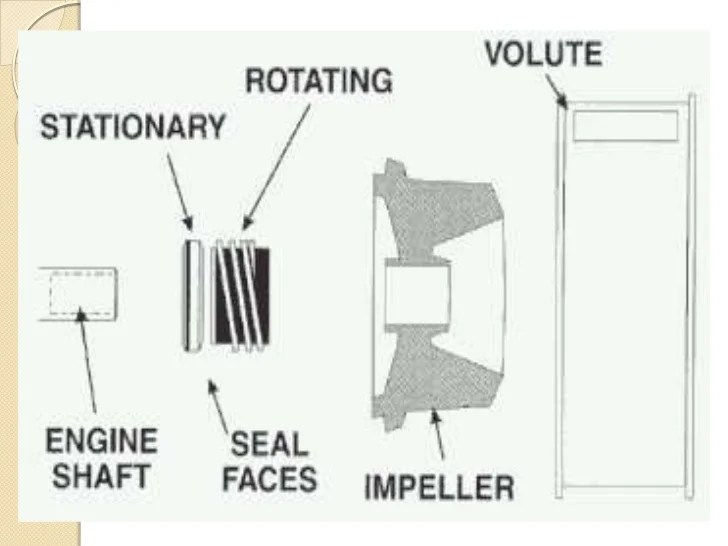 centrifugal pump mechanical seal diagram bmw z3 speaker wiring vs gland packing packings br loss of material a basic comparison with the leakage rate for compression and
