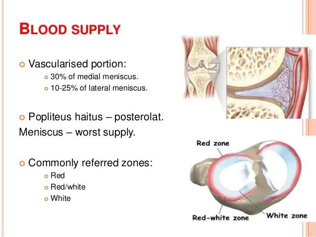 Arthroscopic Meniscus Surgery: Resect or Repair 2014