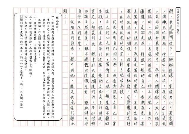 【國中會考】「一句話」起筆寫貓 宜蘭生奪寫作6級分
