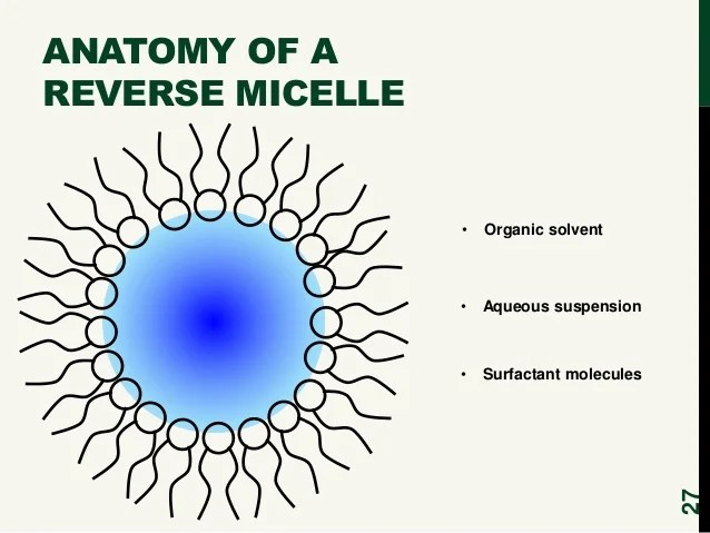 Metal ion burst: Examining metal ion diffusion using