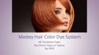 Mastey Hair Color Certification - No Ammonia No PPD Hair ...