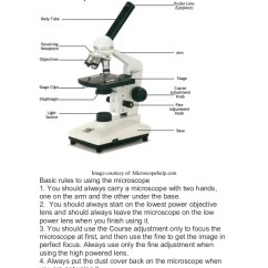 A Well Labelled Diagram Of Microscope 2000 Ford Expedition Car Stereo Wiring Labeled