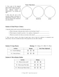 Microscope Lab Worksheet. Worksheets. Ratchasima Printable ...
