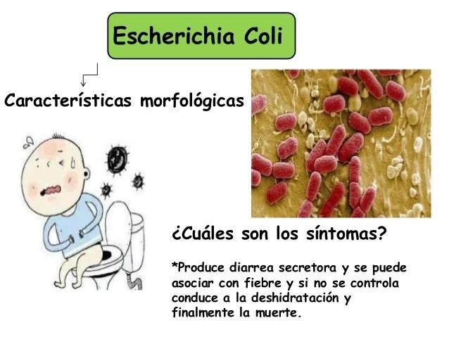 Microbiología Enfermedades Entéricas.