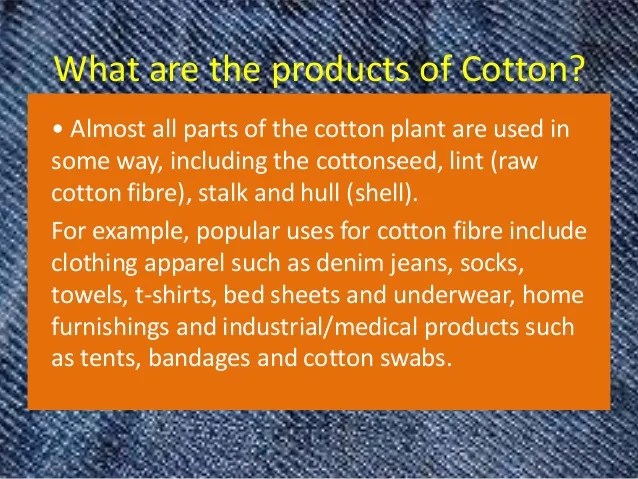 Why We Love Cotton by Model farms