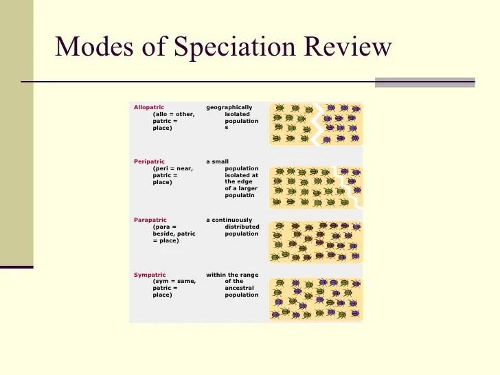 Models Of Speciation