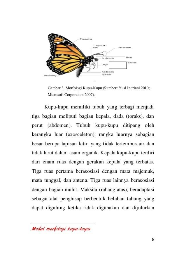 Modul morfologi kupu kuppudocxbbb