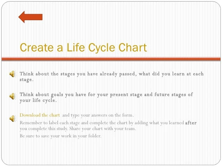 human life cycle stages diagram wiring for trailer mounted brake controller morrisoneb 9 create a chart
