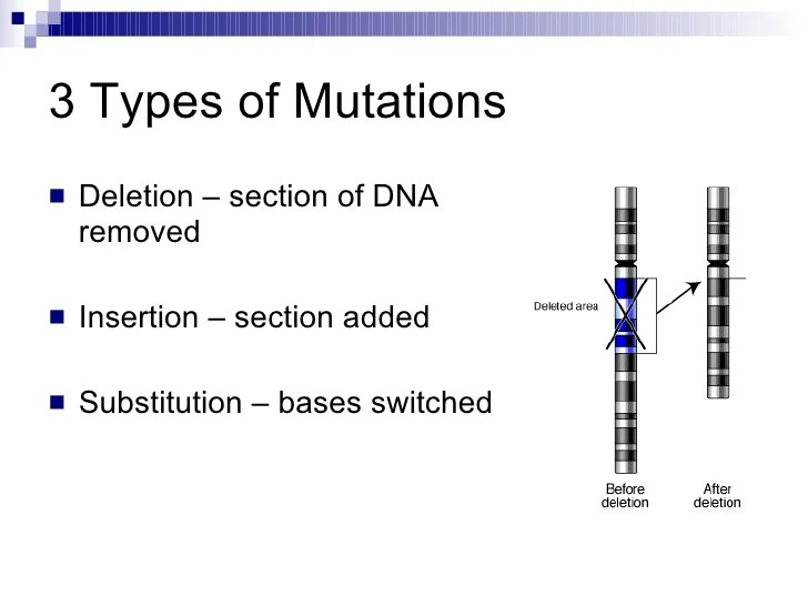 Mutations Autosomal Dominant