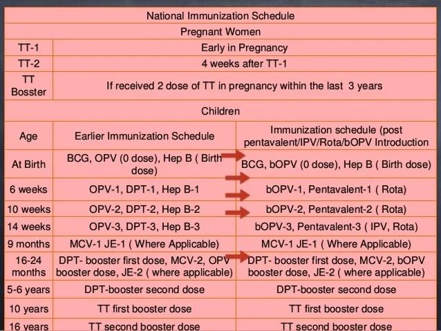 national immunization schedule also evolution of programme in india with recent update rh slideshare