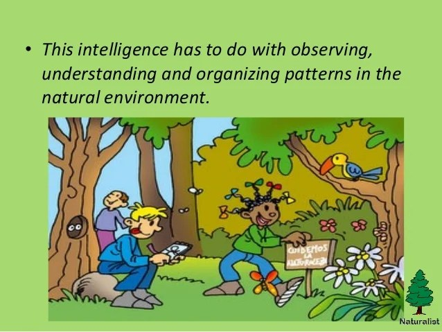 Naturalist Intelligence Presentation