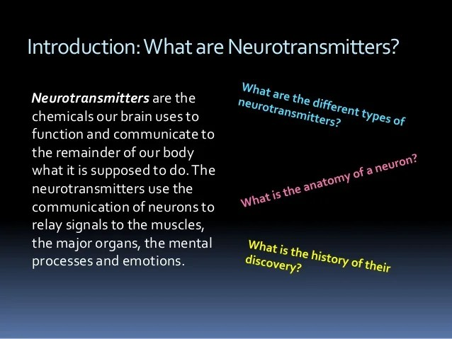 Neurotransmitters The Tiniest Spark Of Life