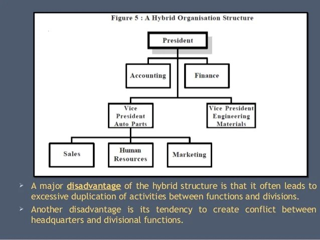 Vertical structure  organization also organizational structures on the basis of functions  divisions rh slideshare