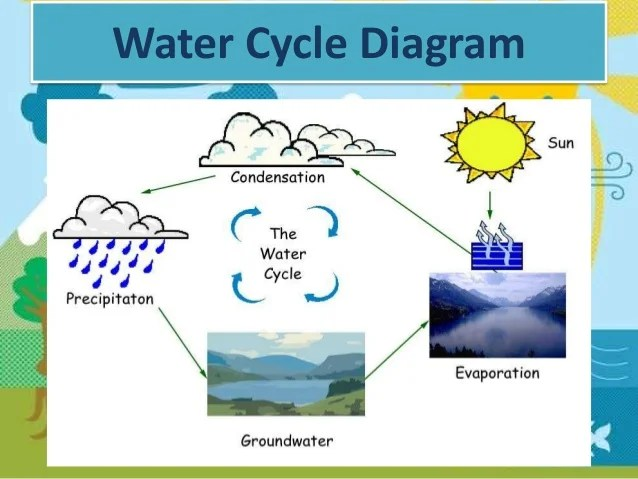 also   neill molly the water cycle rh slideshare