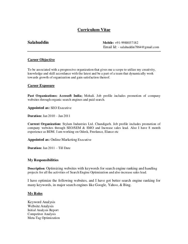sample resume starters