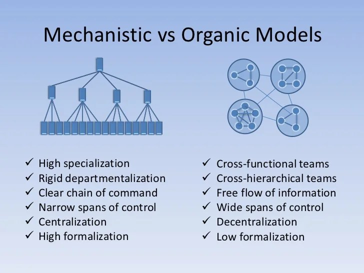 ️ Organic structure of society. The Disadvantages of an Organic Organizational Structure. 2019-02-27