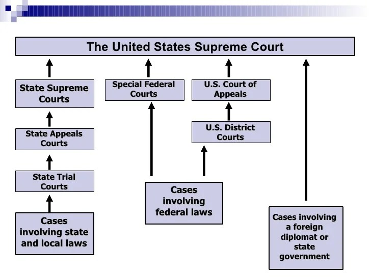 california court system diagram audio jack usa free wiring for you organization of u s florida state