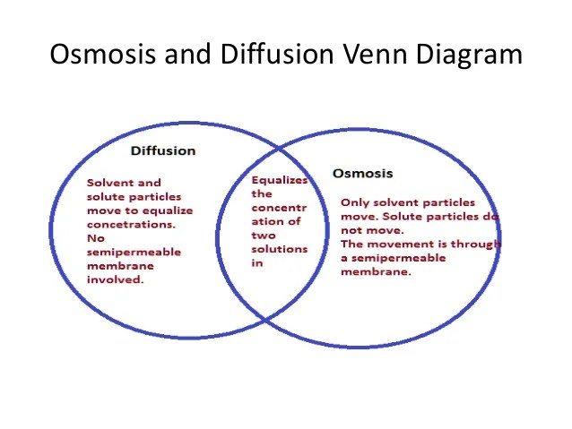 create a venn diagram comparing osmosis and diffusion lifan 125cc engine wiring n 19