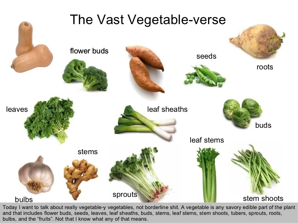 The Vast Vegetable Verse Today I