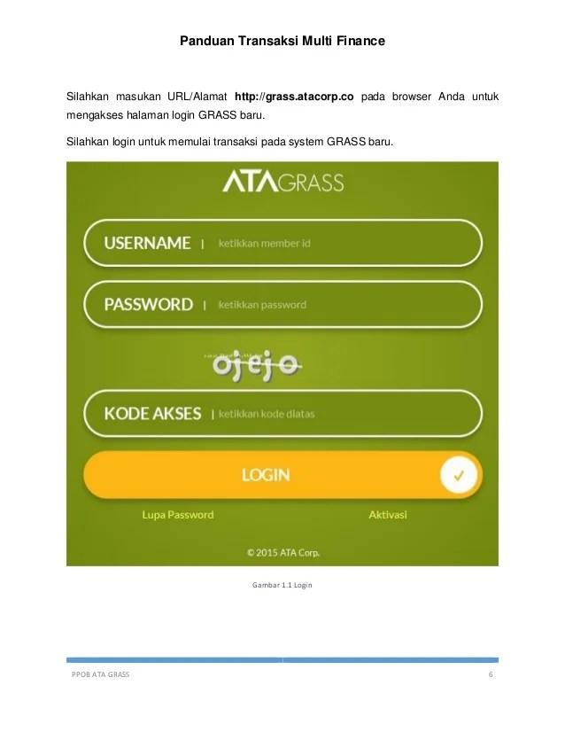 Ata Grass Corp : grass, Grass