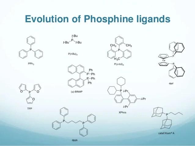Palladium-Catalyzed reactions in Medicinal Chemistry