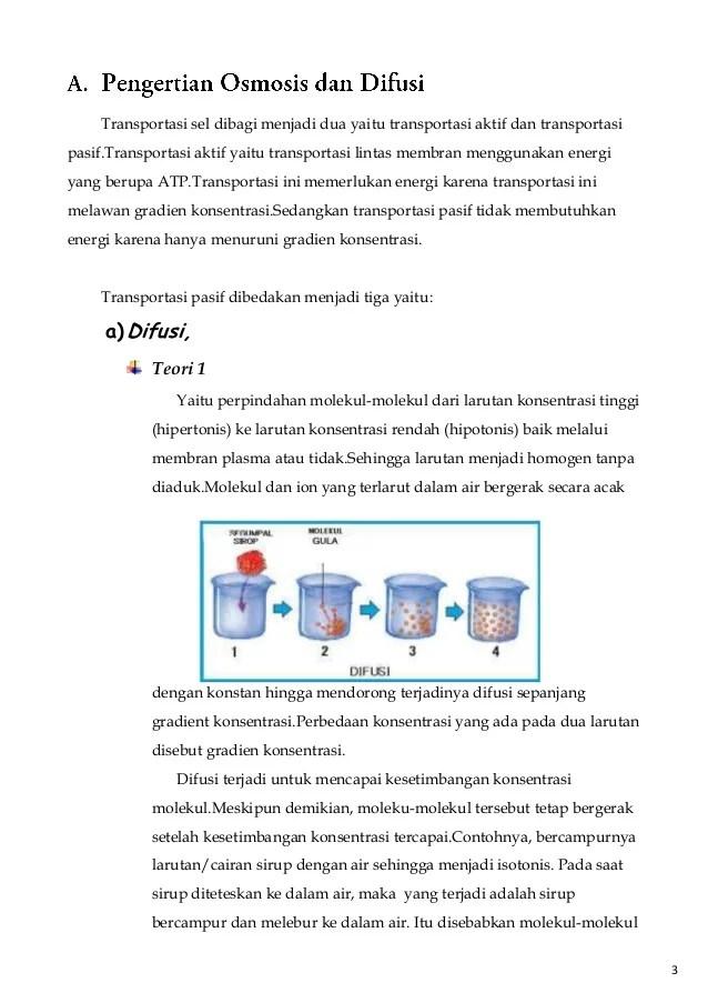 Osmosis Dan Difusi : osmosis, difusi, Jurnal, Tentang, Difusi, Osmosis, Sepe.neaal.site