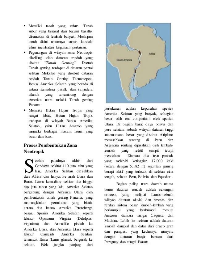Zona Neotropik : neotropik, Persebaran, Fauna, Neotropik